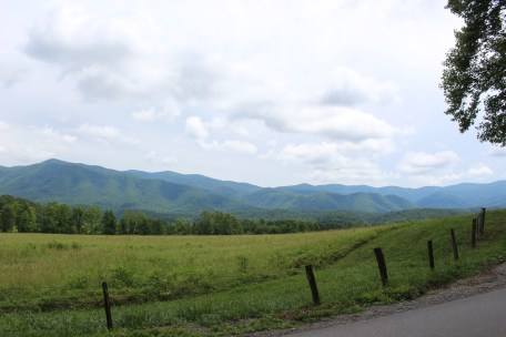 "Driving the loop through Cade's Cove. The scenery is so pretty! Last time we went, it rained all day and the mountains were extra ""smokey"". This time it was beautiful weather and the views were just gorgeous!"