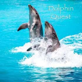 DolphinQuestButton