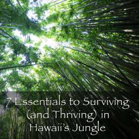 SurvivingHawaiiJungleButton