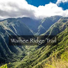 waihee-ridge-button