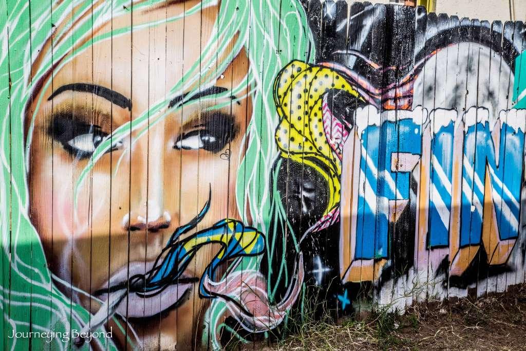Phoenix Street Art-13
