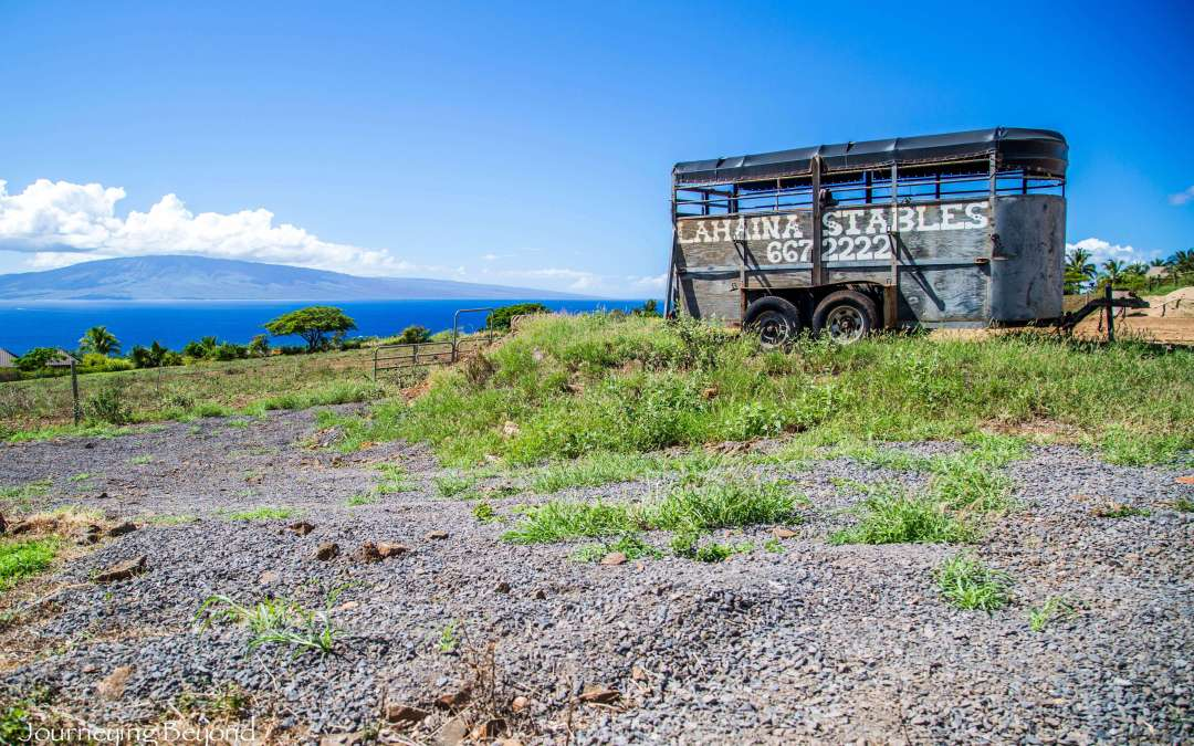Tour West Maui by Horseback
