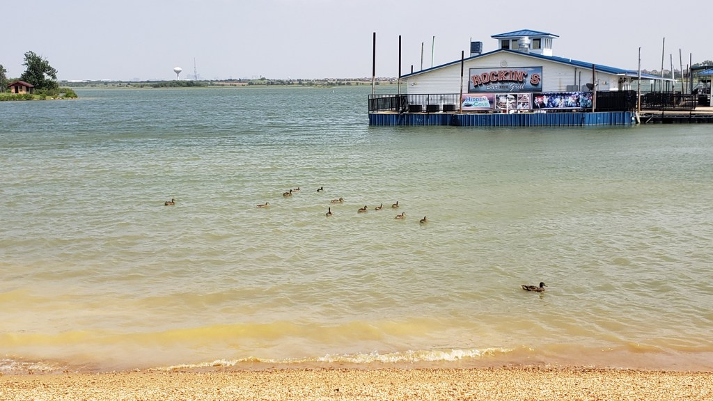 rock beach with water and marina in distance