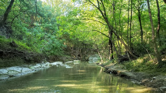 West Rowlett Creek in the morning sunshine