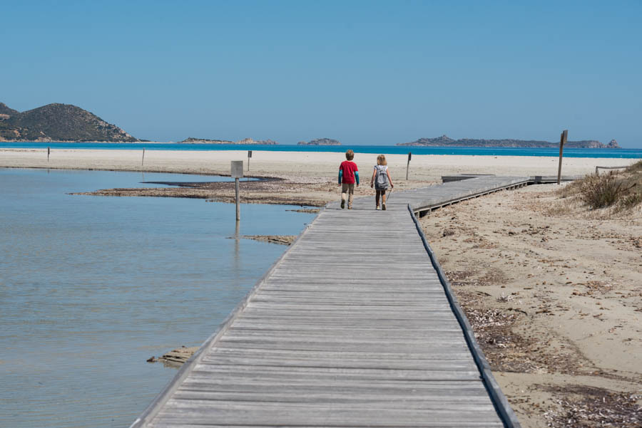 Chasing Flamingos Part I: Notteri, Villasimus, Sardinia