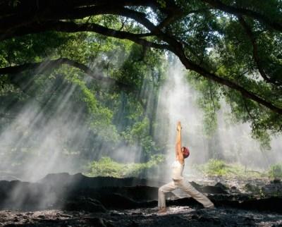 conscious-life-design-allows-freedom-for-living