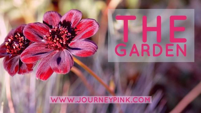 The Garden - Journey Pink