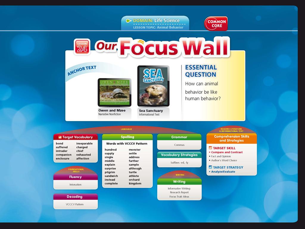 Weekly Reading Focus Walls Grade 4 Long Beach Island