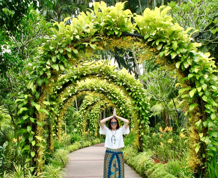 PLACE TO BE ENJOYED THE BEAUTIFUL ORCHID GARDEN