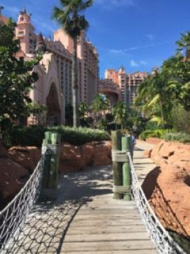 bridge-to-royal-towers-from-paradise-lagoon