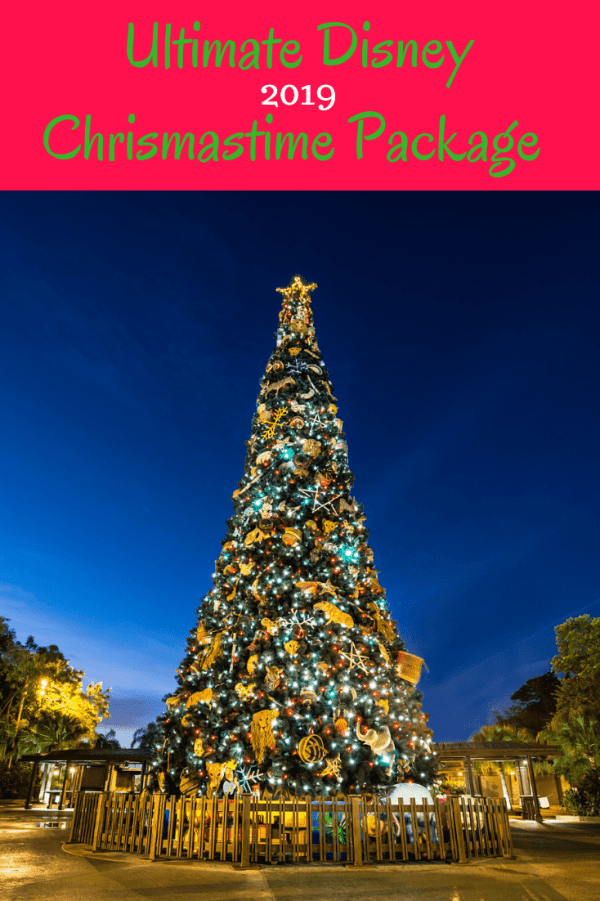 ultimate disney christmastime package