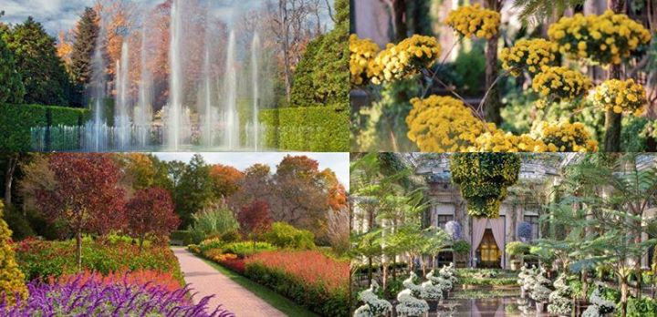 Longwood Gardens: A Year Round Masterpiece