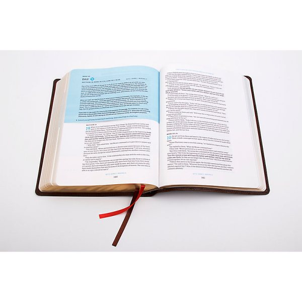 day by day chronological bible