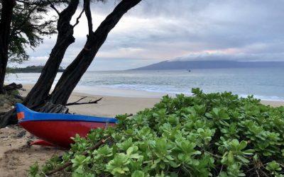 Maui…and my first half marathon run