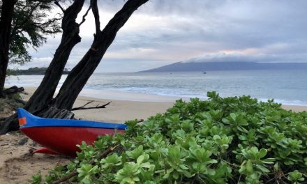Maui…and my first half marathon run