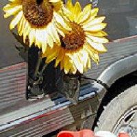 Casi todo sobre los Biocombustibles