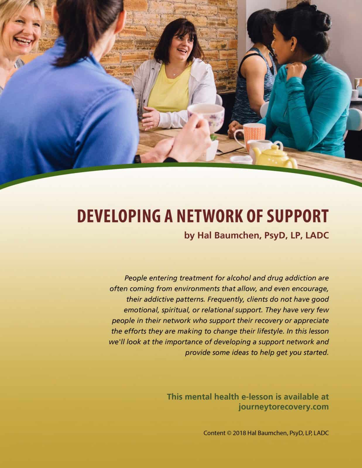 Developing A Network Of Support Mh Lesson