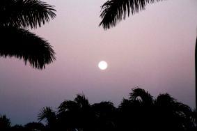 Loving light Full Moon of spring