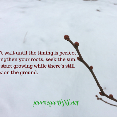 Growing in the Winter (when all we want to do is wait it out)