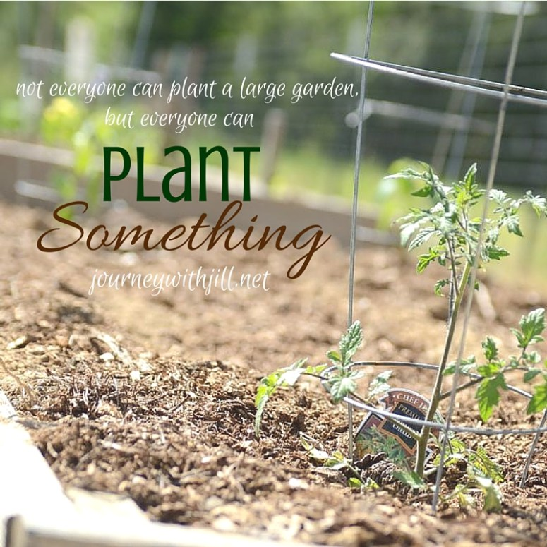 Plant Something | Journey with Jill