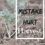A Planting Mistake that Will Hurt Your Harvest