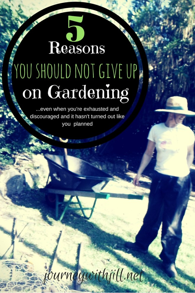 What to do when you're tempted to give up on gardening | Journey with Jill