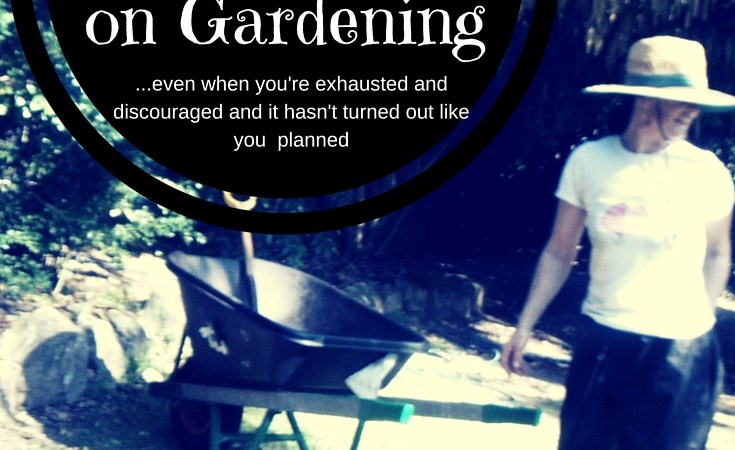 When You're Tempted to Give up Gardening