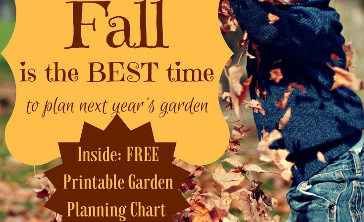 Why Fall is the BEST time to start planning next year's garden