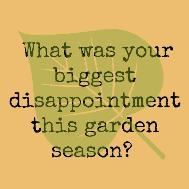 What was your biggest disappointment this garden season? Mine washellip