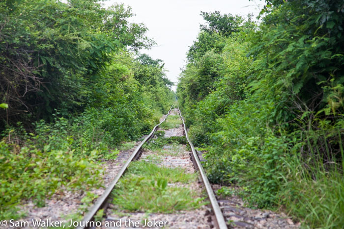 the bamboo train