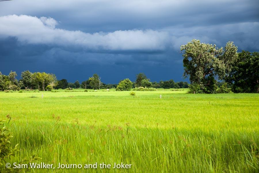 Rice fields and rain clouds, Battambang, Cambodia