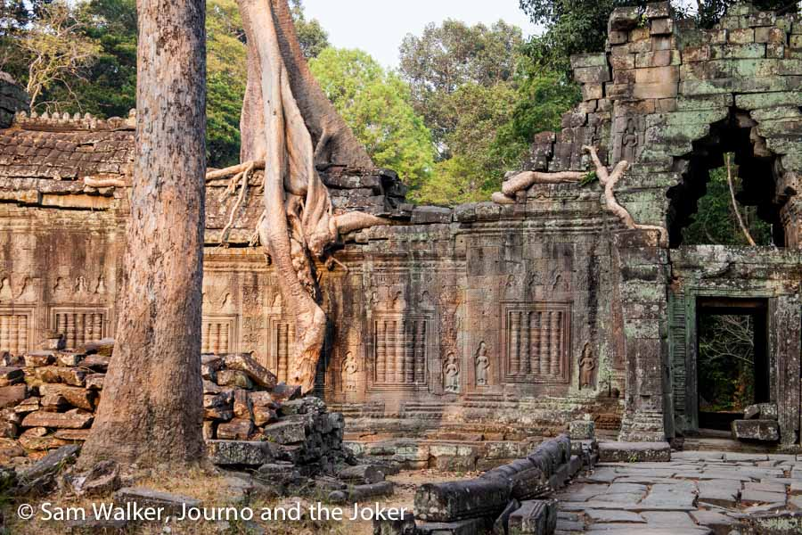 A tree growing out of the wall at Preah Khan