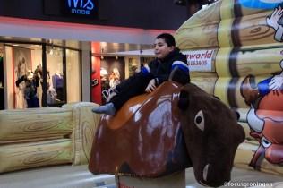 paddepoel-winkelcentrum-rodeostier rijden-2