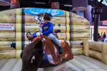 paddepoel-winkelcentrum-rodeostier rijden-8