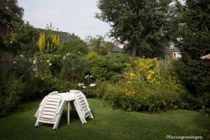 steden nederland, gronngen, paddepoel