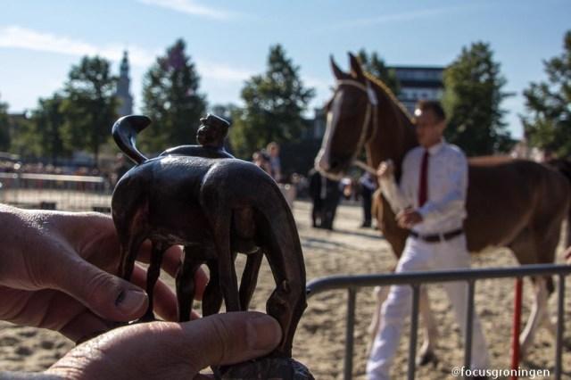 groningen-centrum-groningen ontzet-ossenmarkt paardenkeuring-7