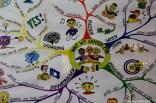 groningen-centrum-jabobijnestraat-borgmanschool-50e zwerfafvalteam-1