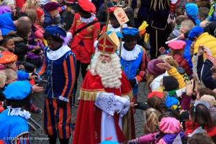 Sinterklaas intocht-2641