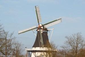 groningen-noordzeebrug-rouw en molen-1