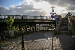 Hereweg viaduct-7566