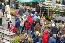 bloemetjesmarkt 2018-2297