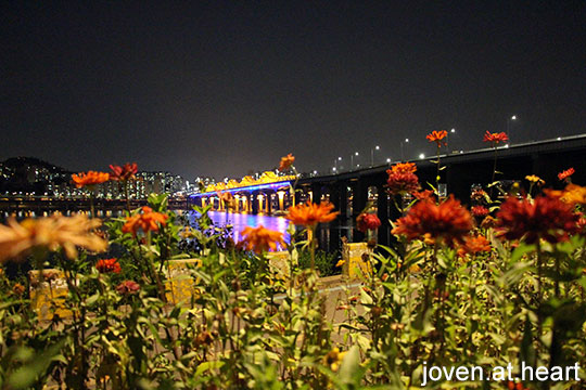 Jamwon section Han River