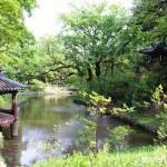 Changdeokgung Secret Garden