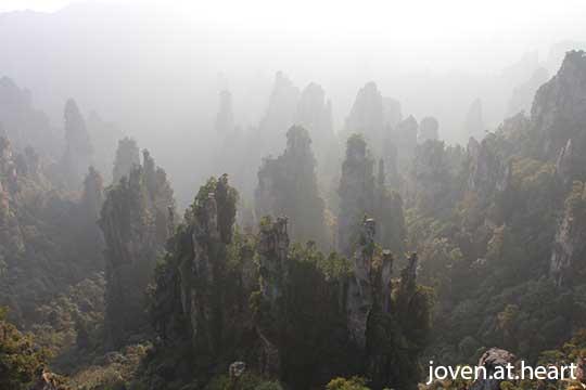 TianZi Mountain, Yuanjiajie (天子山, 袁家界)