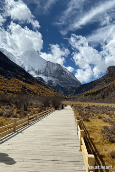 IMG_1525-20191023-daocheng-yading-nature-reserve-sichuan
