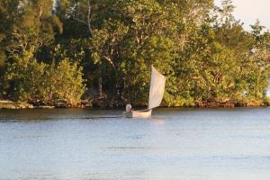 Pescador de la Cienaga en su Rustico Bote