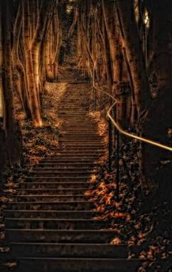 escaleras1
