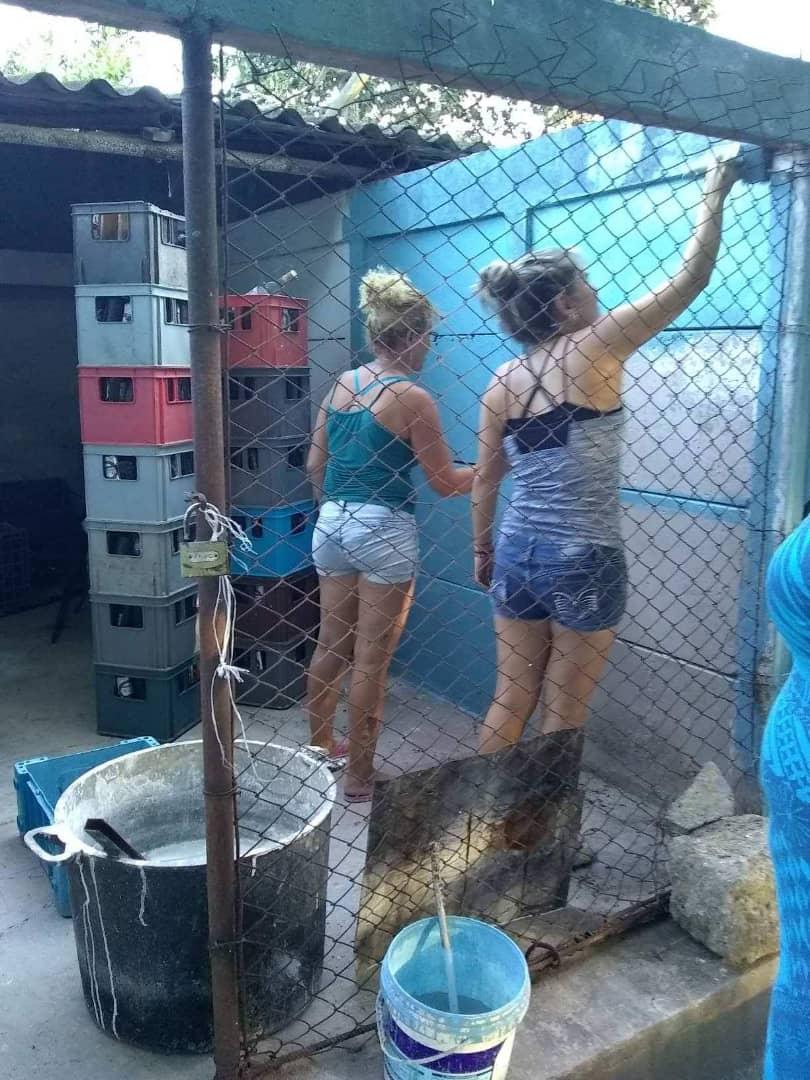 Voluntarias pintando