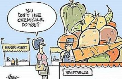 veggie-cartoon
