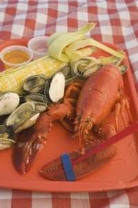 default-ehow-images-a07-sp-eu-cook-live-lobster-home-800x800